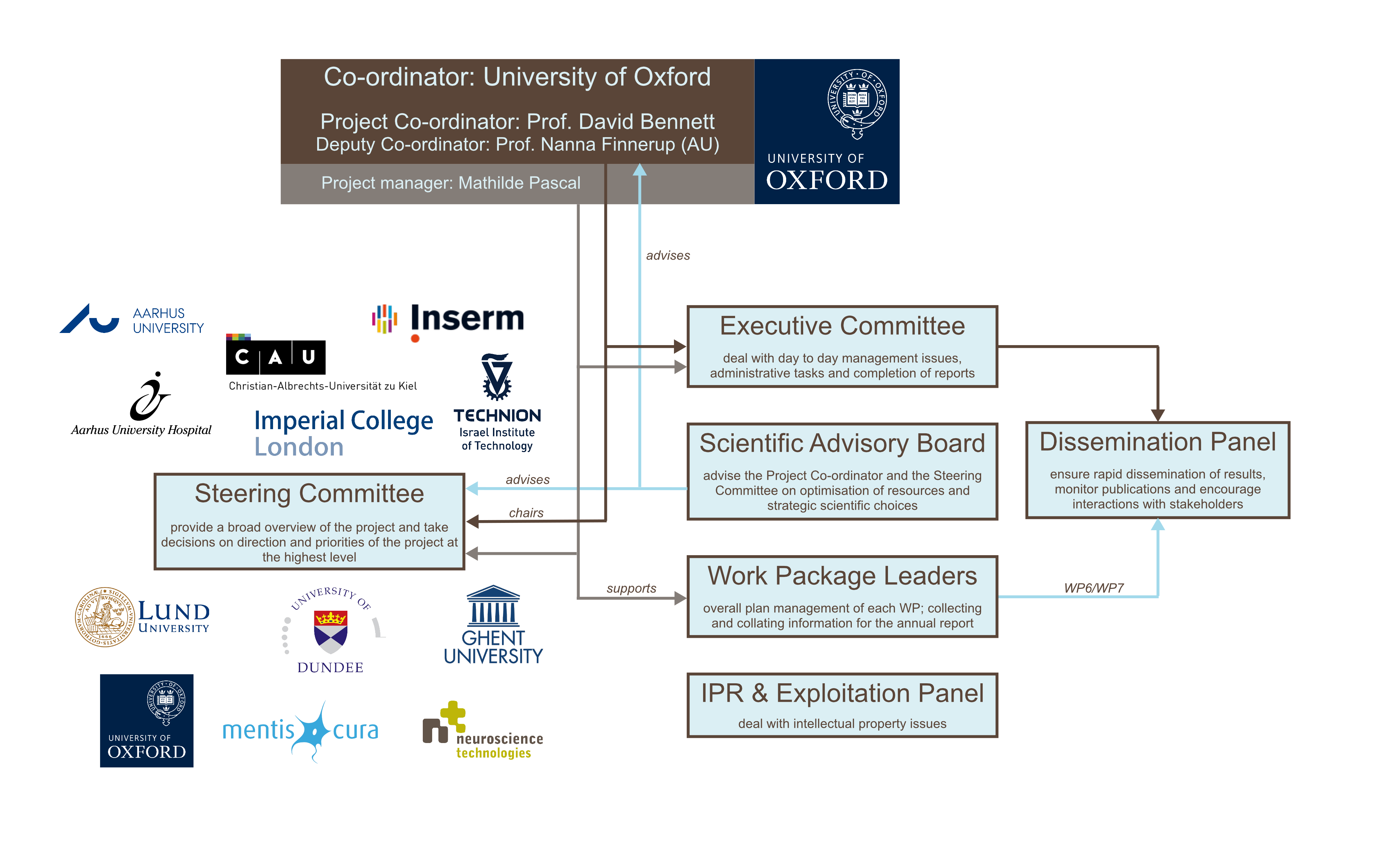 Organigramme of the DOLORisk consortium, including: Coordinators (Oxford), Executive Committee (Oxford and Aarhus), Steering Committee (all partners), Scientific Advisory Board, Work Package leaders, IPR & Exploitation panel, Dissemination panel.